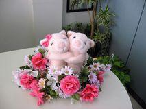 浜松のあき君とまみちゃんのカップルに婚活インタビューしました!