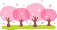 浜松 お見合い 桜